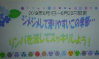 ☆6月キャンペーンのお知らせ☆